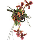 Bordo Orchid, Orange Roses, Phlox, Little Appeles, Pumpers and Green