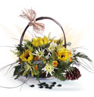 Sunflowers, White Spider, Leather Fern, Pumpers and Eucalyptus in straw basket