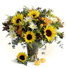 Sunflowers, Aster, Hypericum and Orange Margareta, Spider and Sulidago Flowers Deliveries Haifa