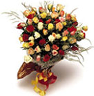 Beautiful cluster of 72 fresh assorted mixed colored Roses beautifully wrapped and tied with a bright ribbon.