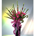 Pink Gladioli wrapped with a purple ribbon in glass vase